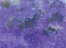 Murgia stellata 2014 Olio su tela cm. 100x80