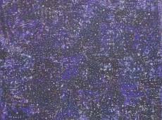 Notte stellata Olio su tela cm. 115x80 2014