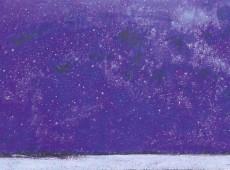 Stellato dopo la pioggia 2013 Olio su tela cm. 60x100